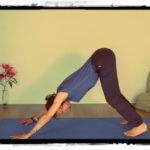 Yoga Zertifikat – der lange oder kurze Weg?